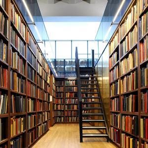 Библиотеки Ростова