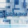 Выставки в Ростове